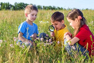 planes_explorando plantas en el retiro-crop-u18068